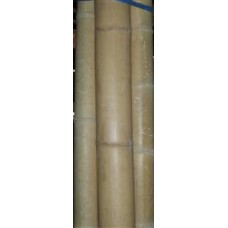 Bamboo Pole Bundle 3/4 Inch x 4' Long